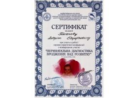 """Сертифікат Участь в роботі науково-практичної конференції з міжнародною участю """"Перинатальна діагностика вроджених вад розвитку"""""""